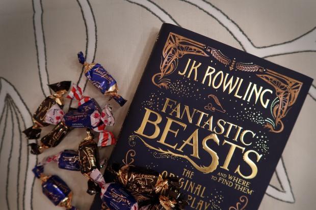 fantasticbibobook2