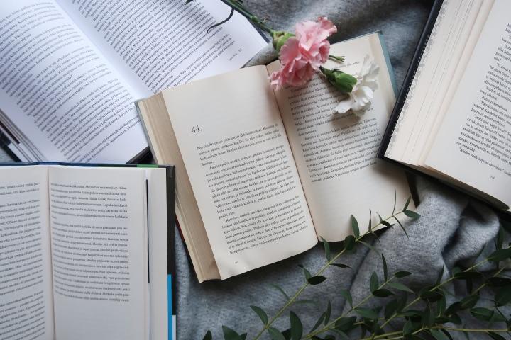 Vuoden lyhyimmän kuukauden lukupäiväkirja – Luimme 9 kirjaa eli melkein 1800sivua