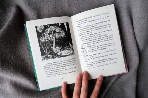 bibobook_kometenkommer2