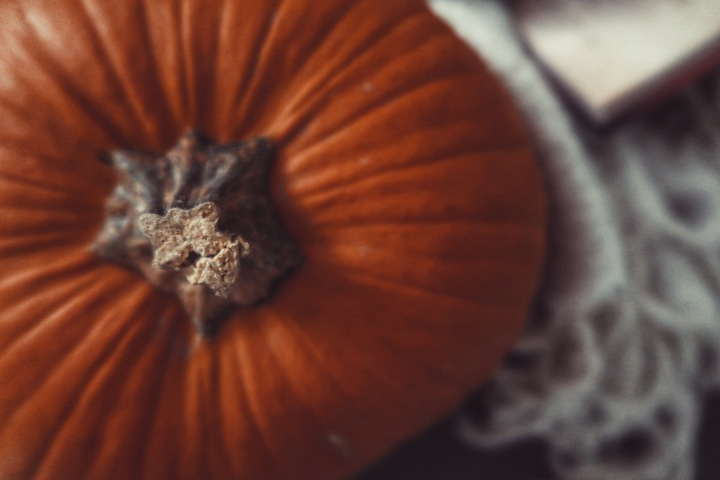 5 karmivaa (ja harvinaista) tarinaa Halloween-lukemiseksi (pt.3)
