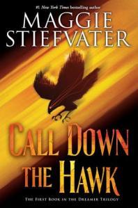 bibobook_calldownthehawk