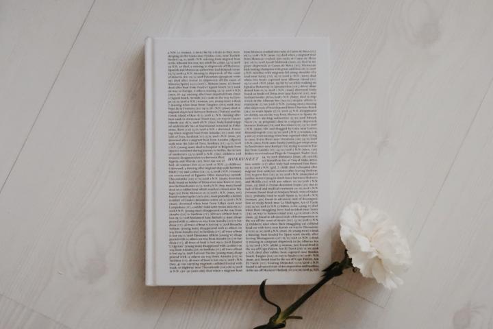 Kirja, jonka ääressä itkin, itkin ja itkin – Taina Tervonen & Anna Autio:Hukkuneet