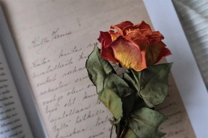 Timo Kalevi Forss Unohtumattomia kirjeitä Suomesta, Aino Järnefeltin kirje Jean Sibeliukselle