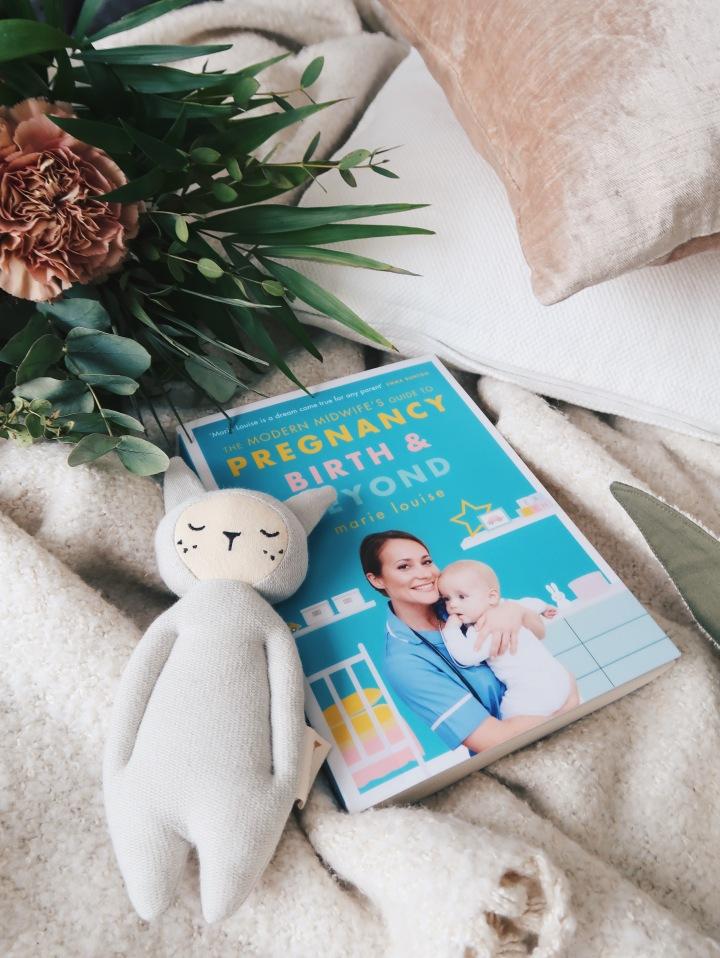 Kattava opas raskauteen, synnytykseen ja ekoihin viikkoihin – Marie Louise: The Modern Midwife's Guide to Pregnancy, Birth andBeyond